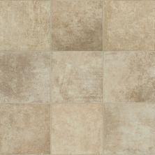 Shaw Floors Resilient Residential Prometheus Crete 00131_0612V