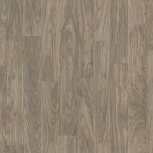 Shaw Floors Vinyl Residential Prometheus Corinthia 00521_0612V