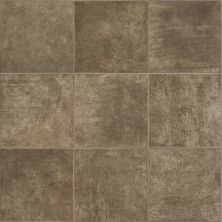 Shaw Floors Vinyl Residential Easy Avenue Pinelands 00202_043VF