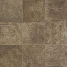 Shaw Floors Resilient Residential Prometheus Pelion 00713_0612V