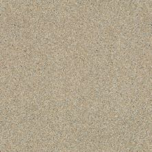 Shaw Floors Vinyl Residential City Limits Granitized 00729_0613V