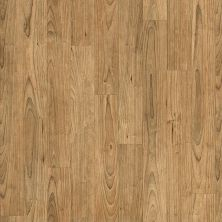Shaw Floors Resilient Residential Apollo Lindus 00206_0614V