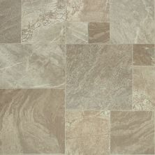 Shaw Floors Resilient Residential Apollo Delphi 00301_0614V