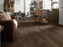 Shaw Floors Vinyl Residential Apollo Elis 00707_0614V