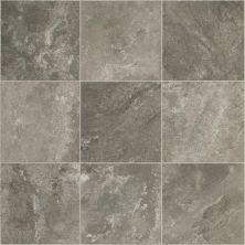 Shaw Floors Vinyl Residential Argos Pleuron 00552_0615V