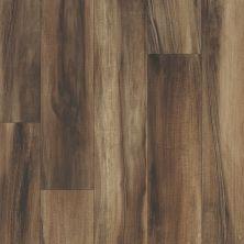 Shaw Floors Vinyl Residential Argos Arcadia 00730_0615V