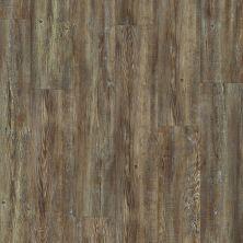 Shaw Floors Resilient Residential Prime Plank Tattered Barnboard 00717_0616V