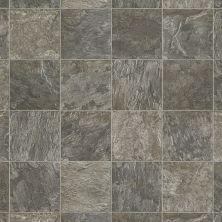 Shaw Floors Resilient Residential Forestville 00410_0652V