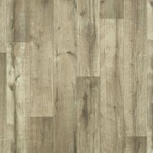Shaw Floors Resilient Residential Cloverdale 00509_0652V