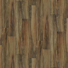 Shaw Floors Vinyl Residential Sonoma Guerneville 00603_0652V