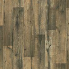 Shaw Floors Resilient Residential Sonoma Bodego 00701_0652V