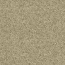 Shaw Floors Vinyl Residential Sonoma Healdsburg 00741_0652V
