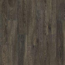 Shaw Floors Resilient Residential Artisan Plank Pacific Mocha 00755_0664V