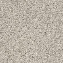 Anderson Tuftex Nfa/Apg Harmonious Platinum 00552_069AG
