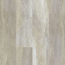 Shaw Floors Resilient Residential Endura 512c Plus Alabaster Oak 00117_0736V