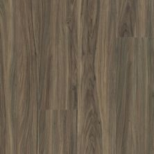 Shaw Floors Resilient Residential Endura Plus Cinnamon Walnut 00150_0736V