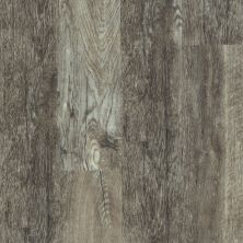 Shaw Floors Resilient Residential Endura Plus Smoky Oak 00556_0736V