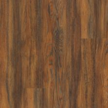 Shaw Floors Resilient Residential Endura 512c Plus Auburn Oak 00698_0736V