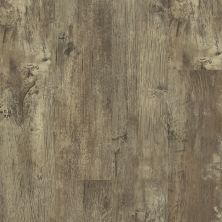 Shaw Floors Resilient Residential Endura Plus Jade Oak 00728_0736V