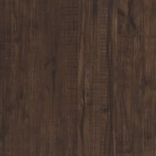 Shaw Floors Resilient Residential Endura 512c Plus Umber Oak 00734_0736V