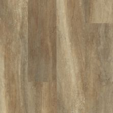 Shaw Floors Resilient Residential Endura 512c Plus Tan Oak 00765_0736V