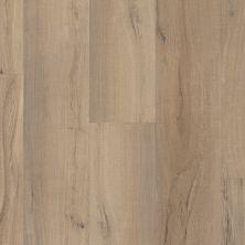 Shaw Floors Resilient Residential Endura Plus Driftwood 01056_0736V