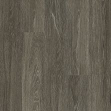 Shaw Floors Vinyl Residential All American Independence 00564_0799V