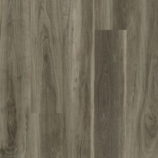 Shaw Floors Vinyl Residential All American Liberty 00568_0799V