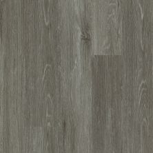 Shaw Floors Vinyl Residential All American Heritage 00572_0799V