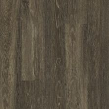 Shaw Floors Vinyl Residential All American Anthem 00774_0799V