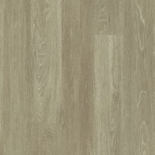 Shaw Floors Resilient Residential All American Patriot 00775_0799V