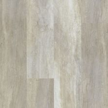 Shaw Floors Resilient Residential Endura 512g Plus Alabaster Oak 00117_0802V