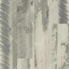Shaw Floors Resilient Residential Endura 512g Plus Gray Barnwood 00142_0802V