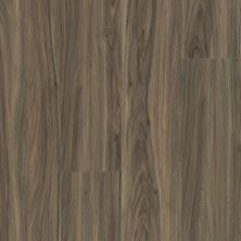 Shaw Floors Resilient Residential Endura 512g Plus Cinnamon Walnut 00150_0802V