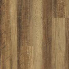 Shaw Floors Resilient Residential Endura 512g Plus Tawny Oak 00203_0802V