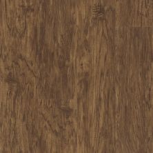 Shaw Floors Resilient Residential Endura 512g Plus Sienna Oak 00452_0802V
