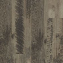 Shaw Floors Resilient Residential Endura 512g Plus Neutral Oak 00562_0802V
