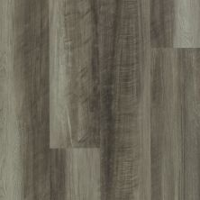 Shaw Floors Resilient Residential Endura 512g Plus Oyster Oak 00591_0802V