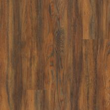 Shaw Floors Resilient Residential Endura 512g Plus Auburn Oak 00698_0802V