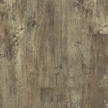 Shaw Floors Resilient Residential Endura 512g Plus Jade Oak 00728_0802V