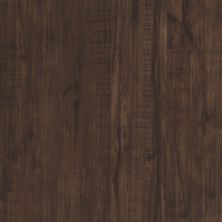 Shaw Floors Resilient Residential Endura 512g Plus Umber Oak 00734_0802V