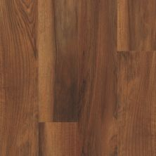 Shaw Floors Resilient Residential Endura 512g Plus Amber Oak 00820_0802V