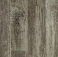 Shaw Floors Vinyl Residential Uptown Now 12 Beaumont Street 00568_0832V