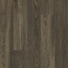 Shaw Floors Vinyl Residential Uptown Now 12 Lakeshore Drive 00774_0832V