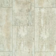 Shaw Floors Resilient Residential Set In Stone 720c Plus Prairie 00148_0834V