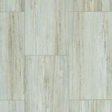 Shaw Floors Resilient Residential Set In Stone 720c Plus Granite 00579_0834V