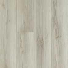 Shaw Floors Vinyl Residential Tivoli Plus Pecorino 00157_0845V
