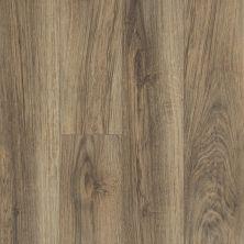 Shaw Floors Resilient Residential Tivoli Plus Riva 00165_0845V