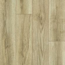 Shaw Floors Resilient Residential Tivoli Plus Rococo 00265_0845V