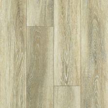 Shaw Floors Vinyl Residential Tivoli Plus Vieste 00268_0845V